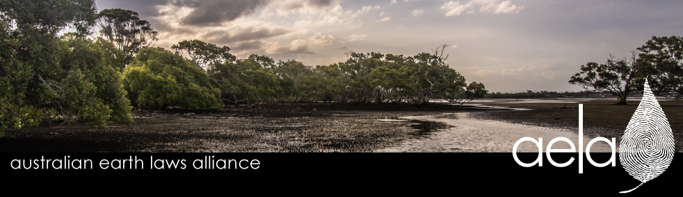 Nudgee Beach, QLD