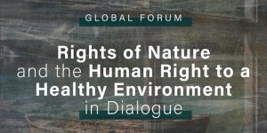 Event [Oct 1 & 2, 2020]: Rights of Nature and the Human Right to a Healthy Environment in Dialogue